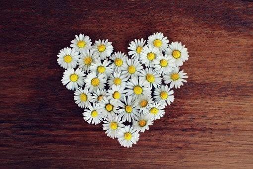花でハートをつくっているところ