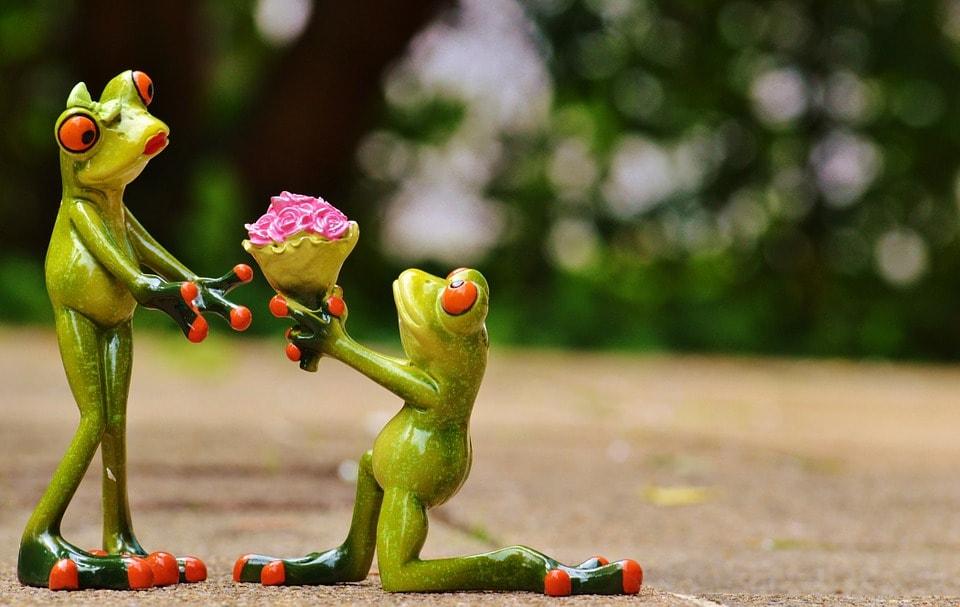 プロポーズで男性が女性に花を渡しているところ