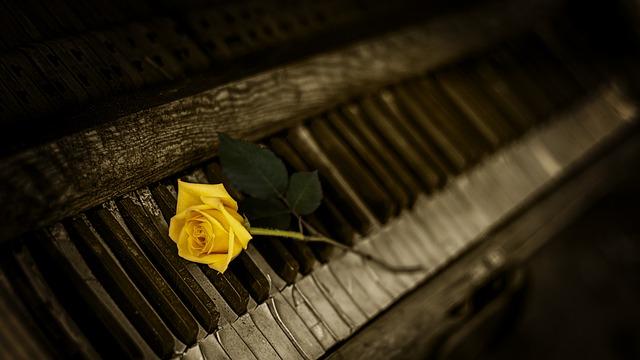 古い鍵盤とバラ