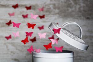 自由を得てはばたく蝶たち